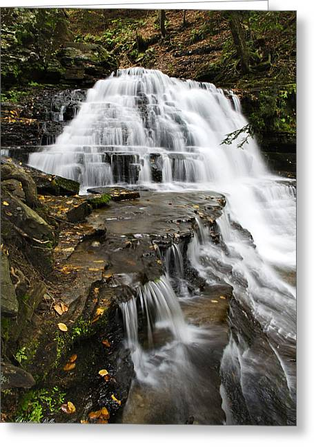 Green Foliage Greeting Cards - Salt Springs Waterfall Greeting Card by Christina Rollo
