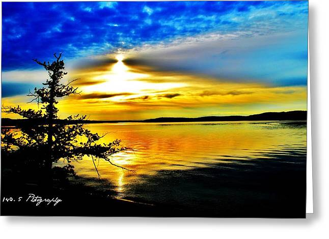 Salter Beach Blues Greeting Card by Tammy Caruthers