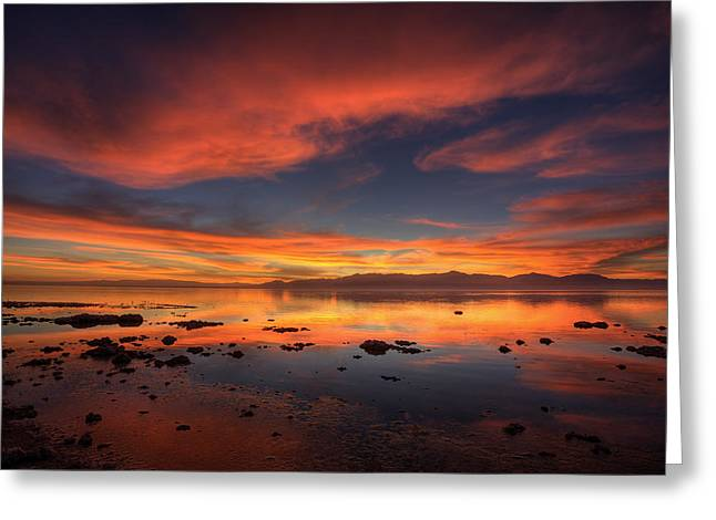 Desert Lake Greeting Cards - Salton Sea Sunset Greeting Card by Peter Tellone