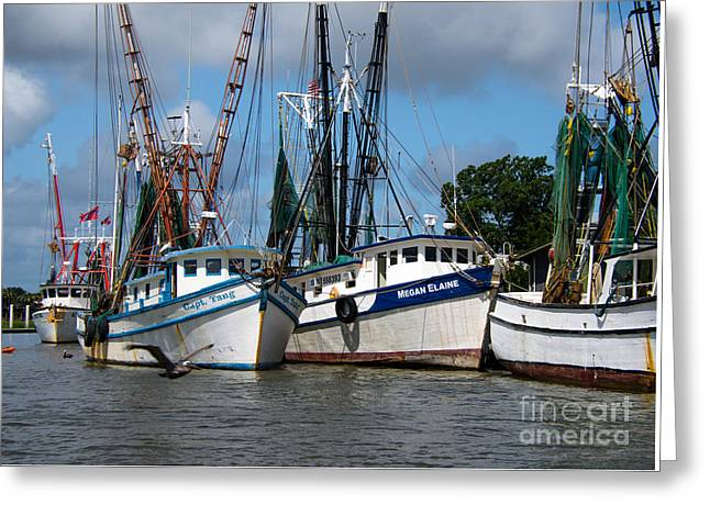 Fishing Creek Greeting Cards - Saltwater South  Greeting Card by Dale Powell