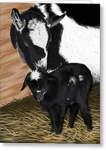 Livestock Drawings Greeting Cards - Sam-e at one hour Greeting Card by Myke  Irving