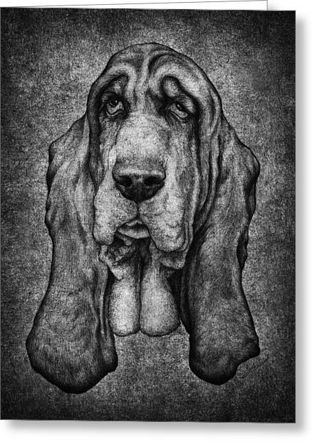 Kyle Mark Wood Greeting Cards - Sam Portait Black and White Greeting Card by Kyle Wood