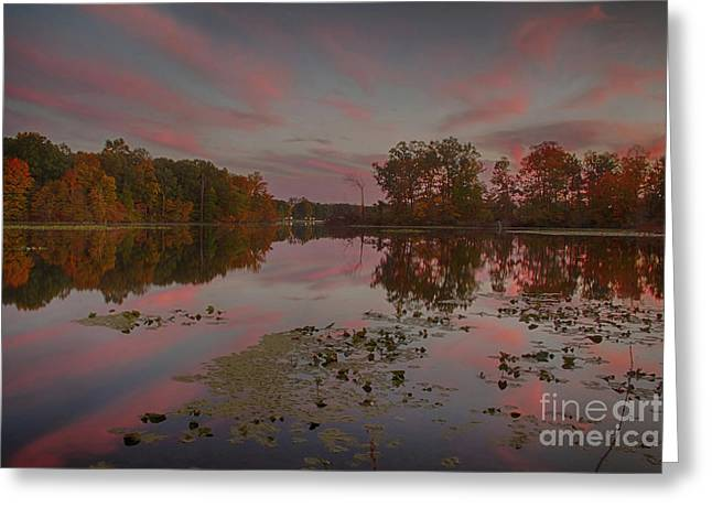 Indiana Autumn Greeting Cards - Same Time Same Place Different View Greeting Card by Michael J Samuels