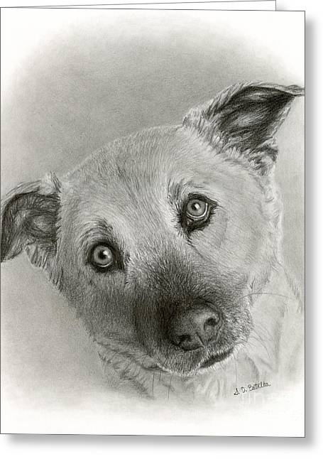 Guard Dog Greeting Cards - German Shepherd Mix- Sami Greeting Card by Sarah Batalka