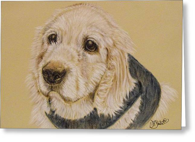 Spaniel Pastels Greeting Cards - Sammy The Cocker Spaniel Greeting Card by Debra Stanton