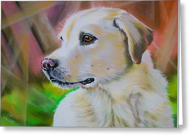 Playful Pastels Greeting Cards - Sammy The Labrador Greeting Card by Kevin Hubbard