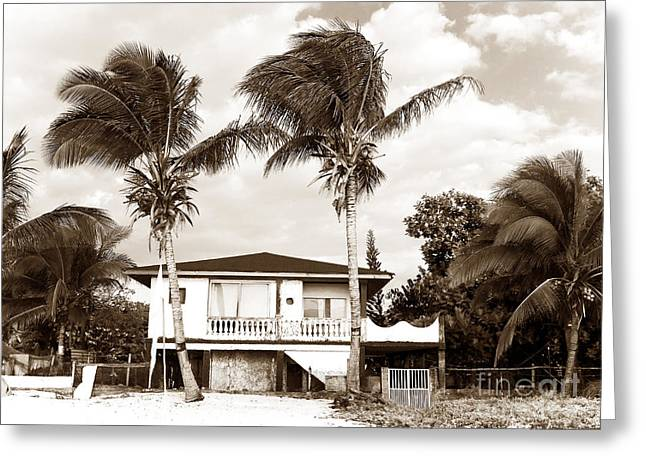 Old School House Greeting Cards - San Andres Island Houses Greeting Card by John Rizzuto