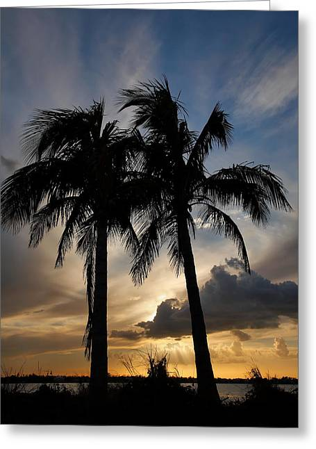 Sunset Prints Greeting Cards - San Carlos Bay Sunset I Greeting Card by Steven Ainsworth