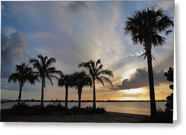 Sunset Prints Greeting Cards - San Carlos Bay Sunset II Greeting Card by Steven Ainsworth