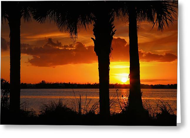 Sunset Prints Greeting Cards - San Carlos Bay Sunset IV Greeting Card by Steven Ainsworth