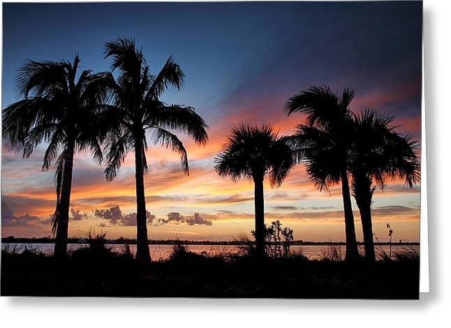 Sunset Prints Greeting Cards - San Carlos Bay Sunset V Greeting Card by Steven Ainsworth