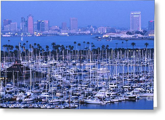 Panoramic Ocean Greeting Cards - San Diego Twilight Greeting Card by Sandra Bronstein