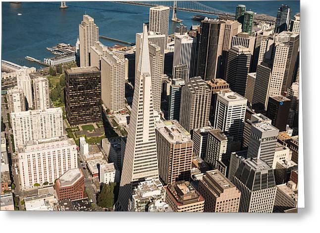 San Francisco Aloft Greeting Card by Steve Gadomski