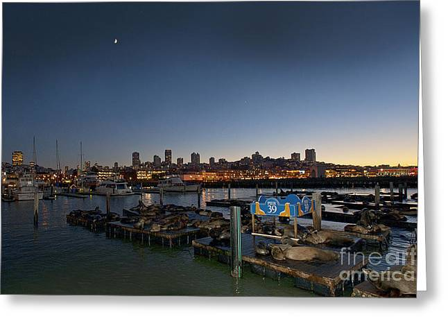 Sailing At Night Greeting Cards - San Francisco at Night Pier 39 Greeting Card by Artist and Photographer Laura Wrede