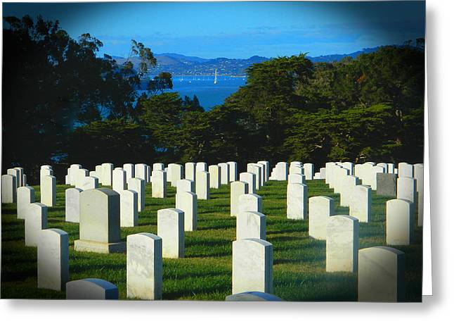 San Francisco National Cemetery In El Presidio Greeting Card by Emmy Marie Vickers