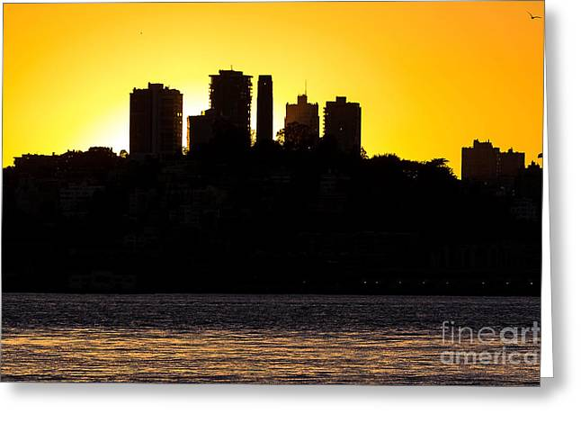 Kate Brown Greeting Cards - San Francisco Silhouette Greeting Card by Kate Brown
