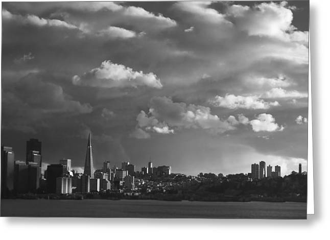 Coit Tower Greeting Cards - San Francisco Skyline Greeting Card by Sean Foster