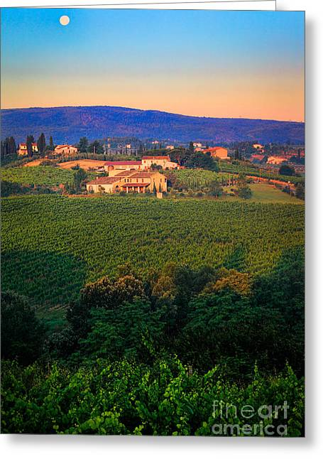 Italian Wine Greeting Cards - San Gimignano Vineyards Greeting Card by Inge Johnsson