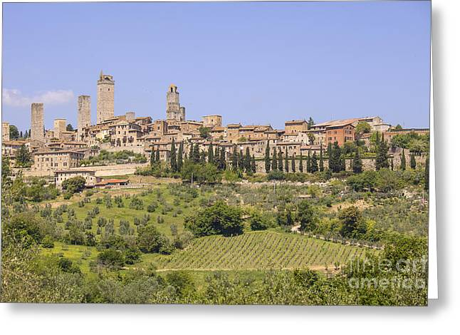Wine Scene Greeting Cards - San Gimignano with vineyards Greeting Card by Patricia Hofmeester