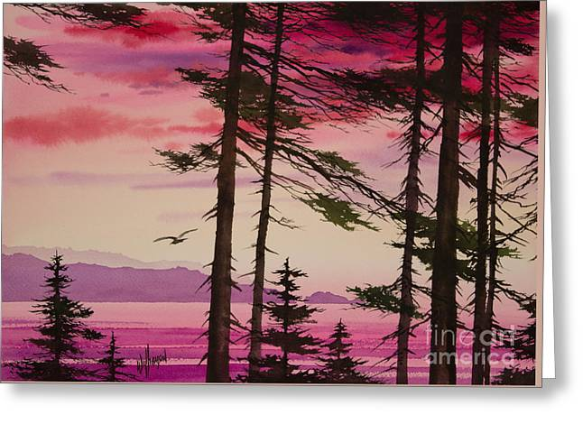 Puget Sound Framed Prints Greeting Cards - San Juan Sunset Greeting Card by James Williamson