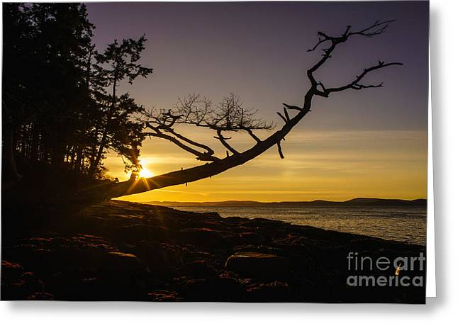 Mike Reid Greeting Cards - San Juans Sunset Peace Greeting Card by Mike Reid