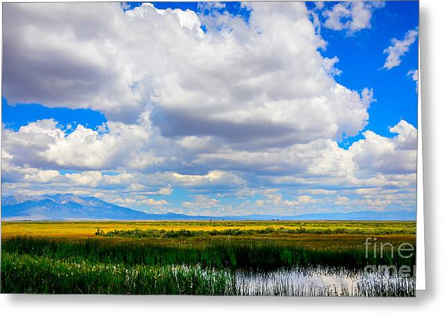Summer Storm Greeting Cards - San Luis Valley of Colorado Greeting Card by Debra Martz