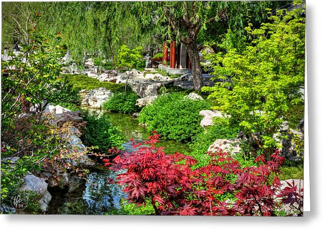 Qi Greeting Cards - San Marino - Huntington Botanical Gardens 005 Greeting Card by Lance Vaughn