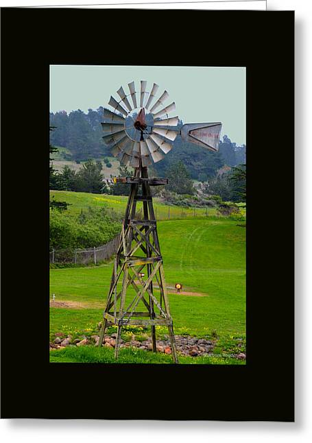 Cambria Greeting Cards - San Simeon Pines Windmill Duvet Greeting Card by Barbara Snyder