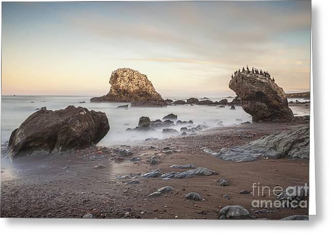 Simeon Greeting Cards - San Simeon State Beach California Greeting Card by Colin and Linda McKie