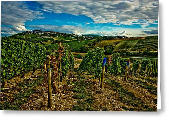 Degustation Greeting Cards - Sancerre vineyards Greeting Card by Oleg Koryagin