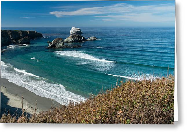 Surfer Art Greeting Cards - Sand Dollar Beach 14 Greeting Card by Josh Whalen