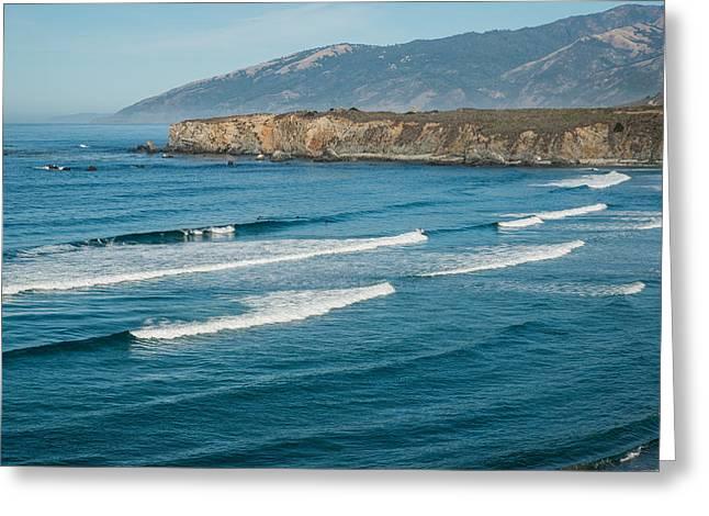 Ocean Art Photos Greeting Cards - Sand Dollar Beach Four Greeting Card by Josh Whalen