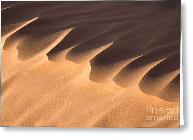 Har Greeting Cards - Sand dune detail Greeting Card by Delphimages Photo Creations