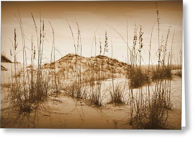 Faa Featured Greeting Cards - Sand Dune in Sepia Greeting Card by Toni Abdnour