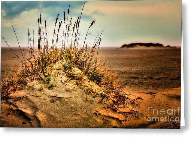 Commercial Photography Digital Greeting Cards - Sand Dune on Ocracoke - Outer Banks I Greeting Card by Dan Carmichael