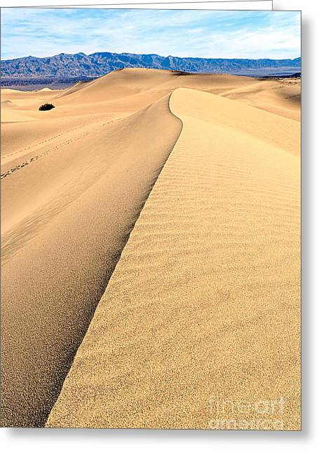 Sand Patterns Greeting Cards - Sand Dune ridge in Death Valley National Park Greeting Card by Jamie Pham