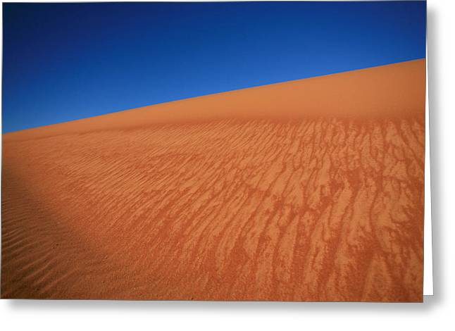 Monkey Mia Greeting Cards - Sand dune Greeting Card by Shari Mattox