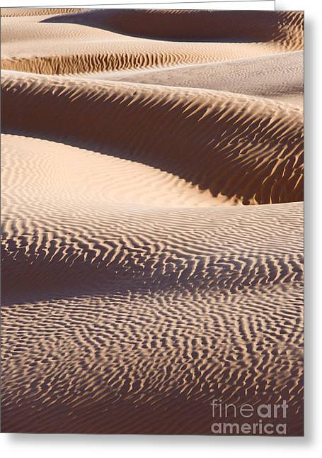 Har Greeting Cards - Sand dunes 2 Greeting Card by Delphimages Photo Creations