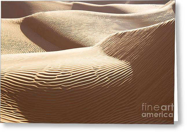 Har Greeting Cards - Sand dunes 3 Greeting Card by Delphimages Photo Creations
