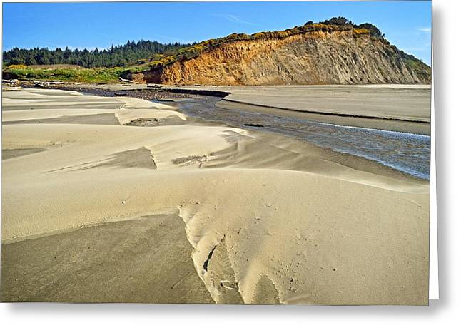 Agate Beach Oregon Greeting Cards - Sand dunes at Agate Beach in Oregon Greeting Card by Maralei Keith Nelson