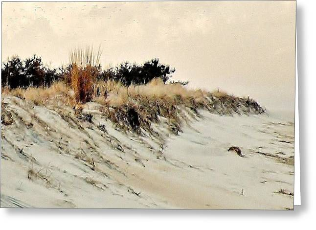 Sand Dunes at Penny Beach Greeting Card by Kim Bemis
