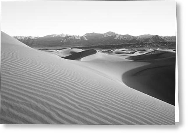 Sand Pattern Greeting Cards - Sand Dunes At Sunrise, Stovepipe Wells Greeting Card by Panoramic Images