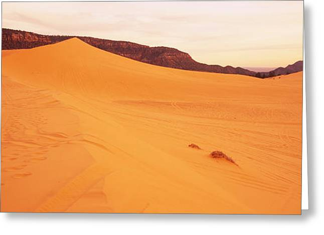 Coral Pink Sand Dunes Greeting Cards - Sand Dunes In A Desert, Coral Pink Sand Greeting Card by Panoramic Images