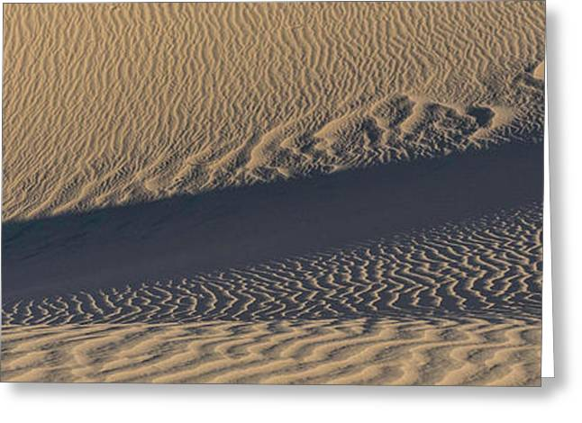 Sand Dunes In A Desert, Eureka Dunes Greeting Card by Panoramic Images