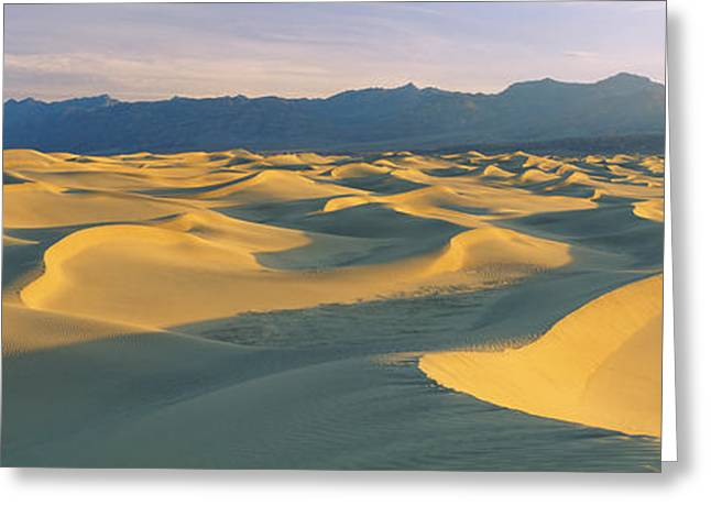 Sand Pattern Greeting Cards - Sand Dunes In A Desert, Grapevine Greeting Card by Panoramic Images