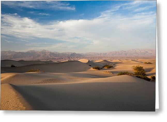 County Landscape Greeting Cards - Sand Dunes In A Desert, Mesquite Flat Greeting Card by Panoramic Images