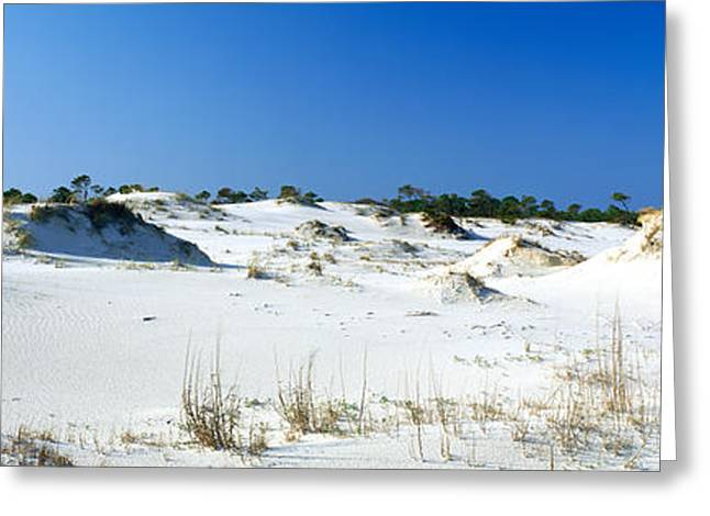 St. George Island Greeting Cards - Sand Dunes In A Desert, St. George Greeting Card by Panoramic Images