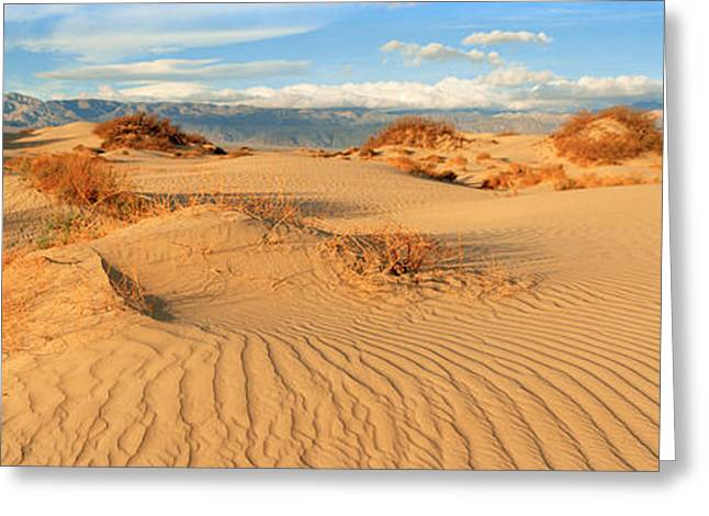 Sand Patterns Greeting Cards - Sand Dunes In A National Park, Mesquite Greeting Card by Panoramic Images