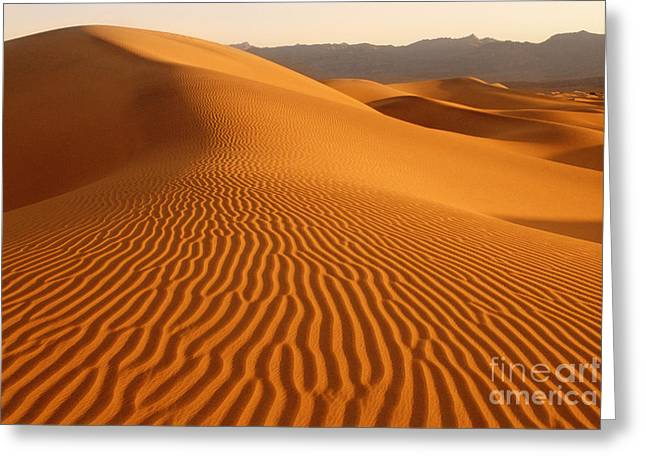 Californian Greeting Cards - Sand Dunes In Death Valley California Greeting Card by George Ranalli