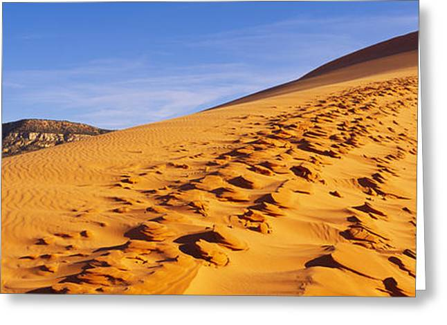 Sand Patterns Greeting Cards - Sand Dunes In The Desert, Coral Pink Greeting Card by Panoramic Images